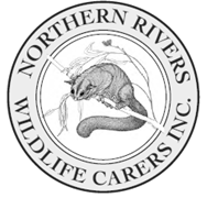 Northern Rivers Wildlife Carers